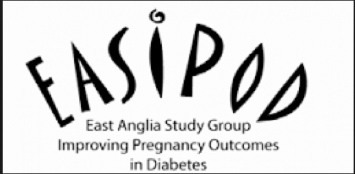 88 Percent Improved Their Competencies In Pre Pregnancy Diabetes Care